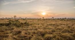 Begegnungen in der Maasai Mara