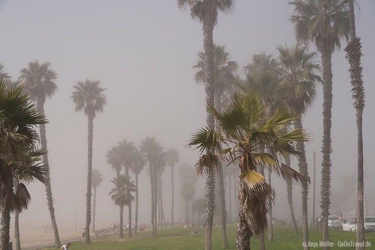 Ein fazinierendes Naturschauspiel - Nebel am Strand