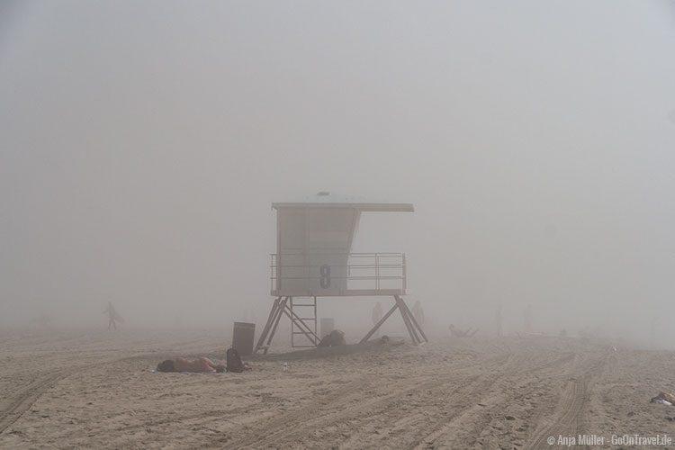 Sonnen im Nebel, macht das Sinn?