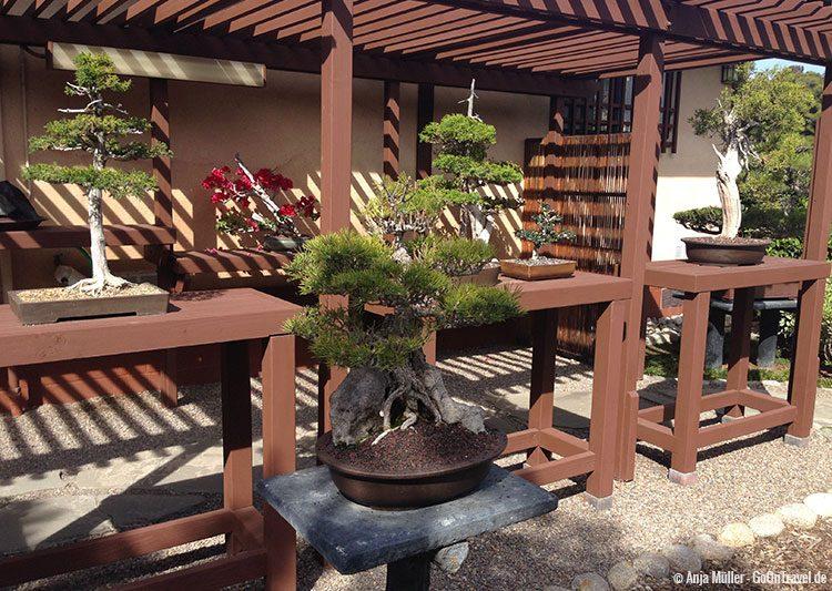 Japanischer Garten im Balboa Park