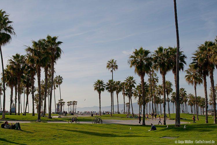 Am Strand von Venice Beach
