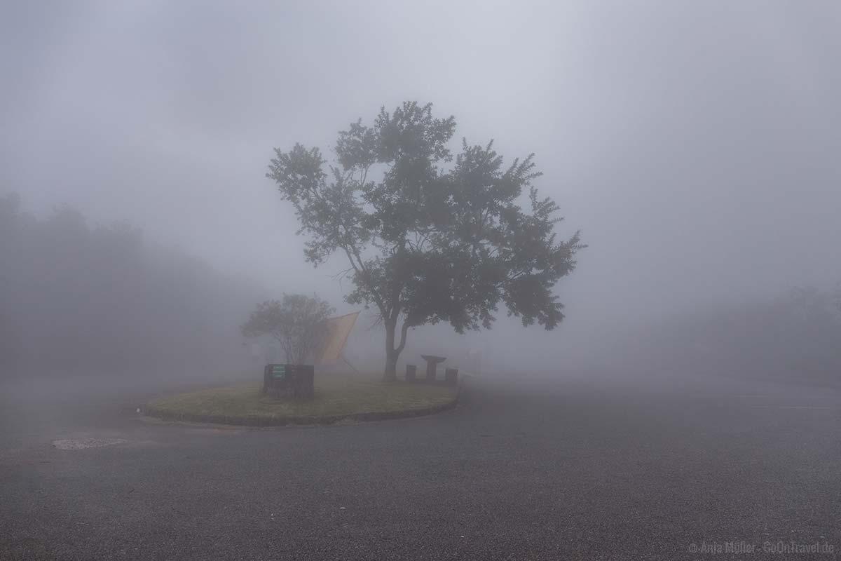 Nebel auf dem Parkplatz am Aussichtspunkt Gods Window