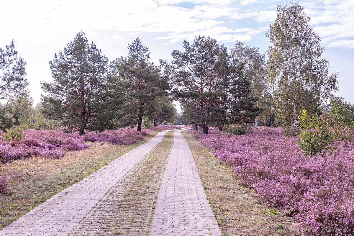 Weg durch den Naturpark Schlaubetal