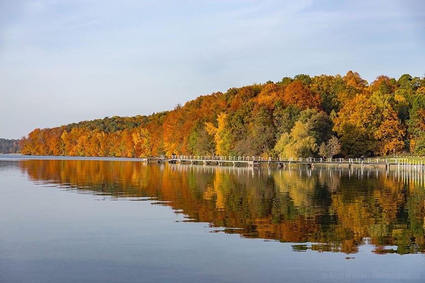 Bunter Herbstwald spiegelt sich im Wasser