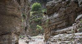 Tageswanderung durch die Imbros-Schlucht auf Kreta