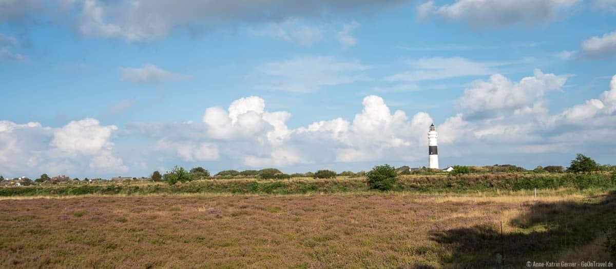 Leuchtturm Kampen und die blühende Heide