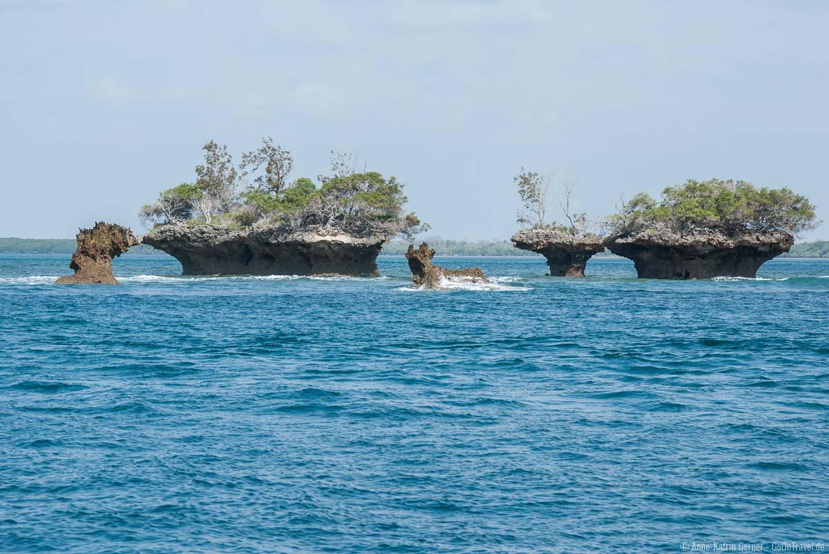 Der Kisite-Mpunguti Marine National Park ist ein Paradies für Taucher und Schnorchler