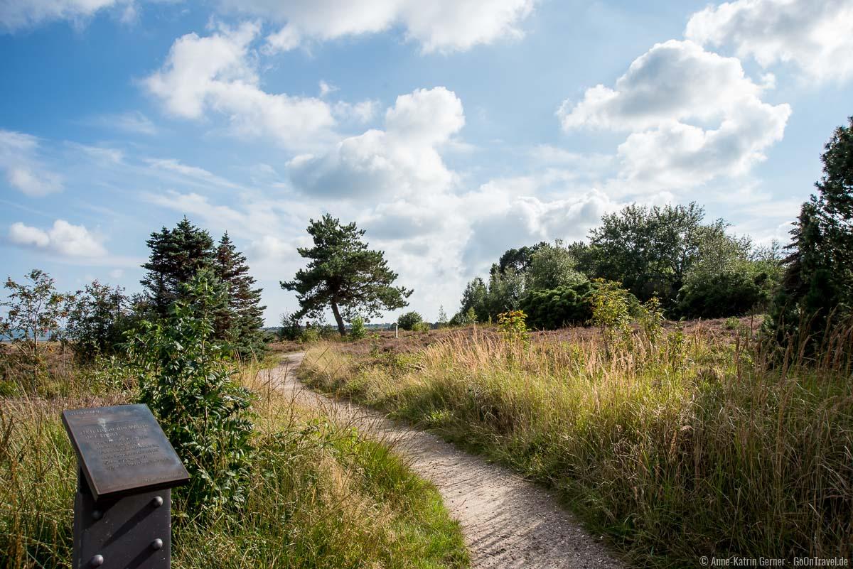 Kunstpfad durch die Heide in Kampen auf Sylt