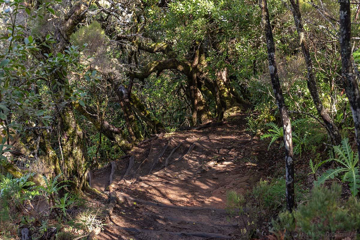 La Gomera Wanderweg