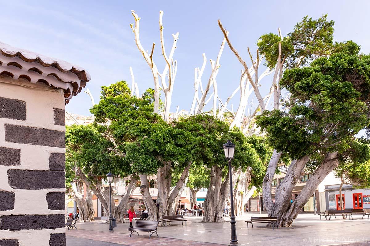 Der Plaza de las Americas