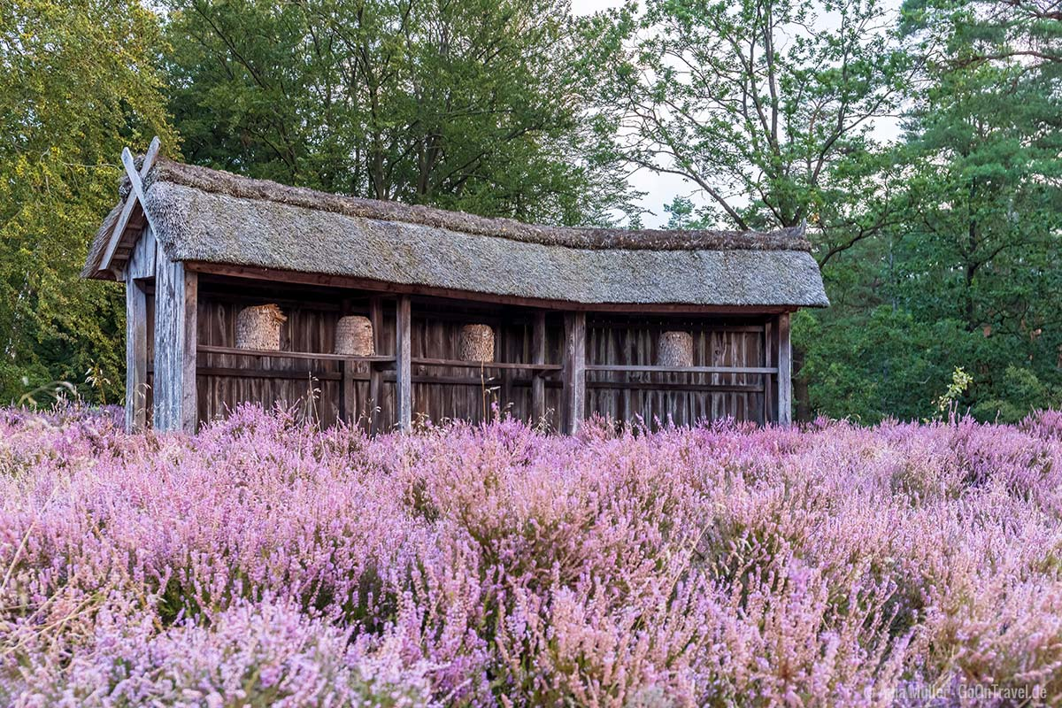 Bienenhaus mitten in der Heide