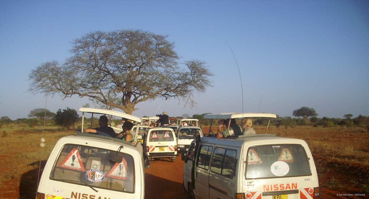 Minibusse im Tsavo Ost NP