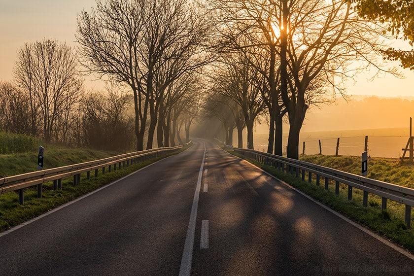 Strasse im Morgennebel