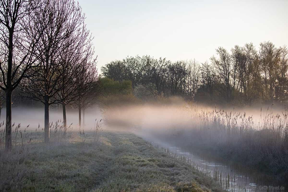 Morgennebel am Rudower Fließ
