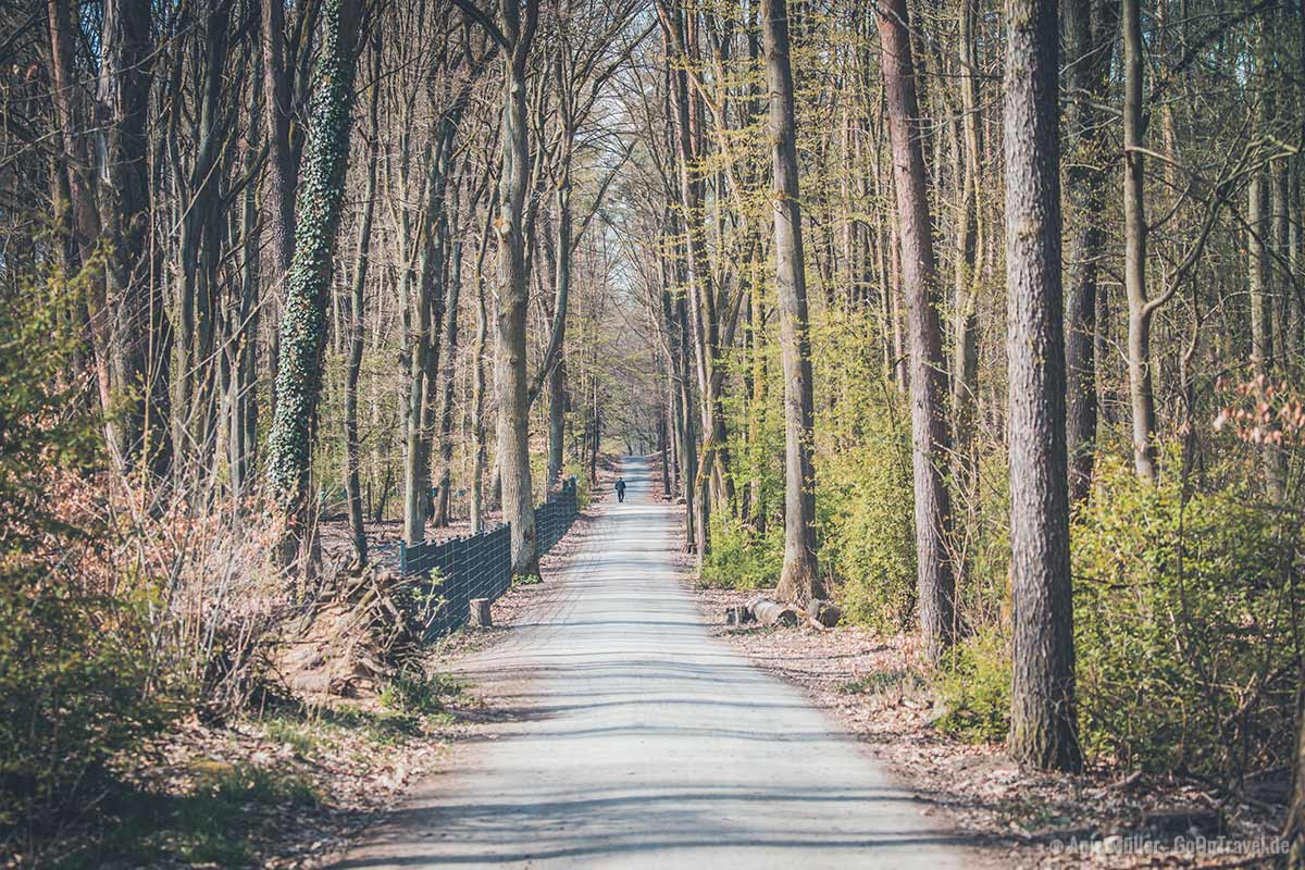 Unterwegs im Tegeler Forst nahe dem Wildgehege