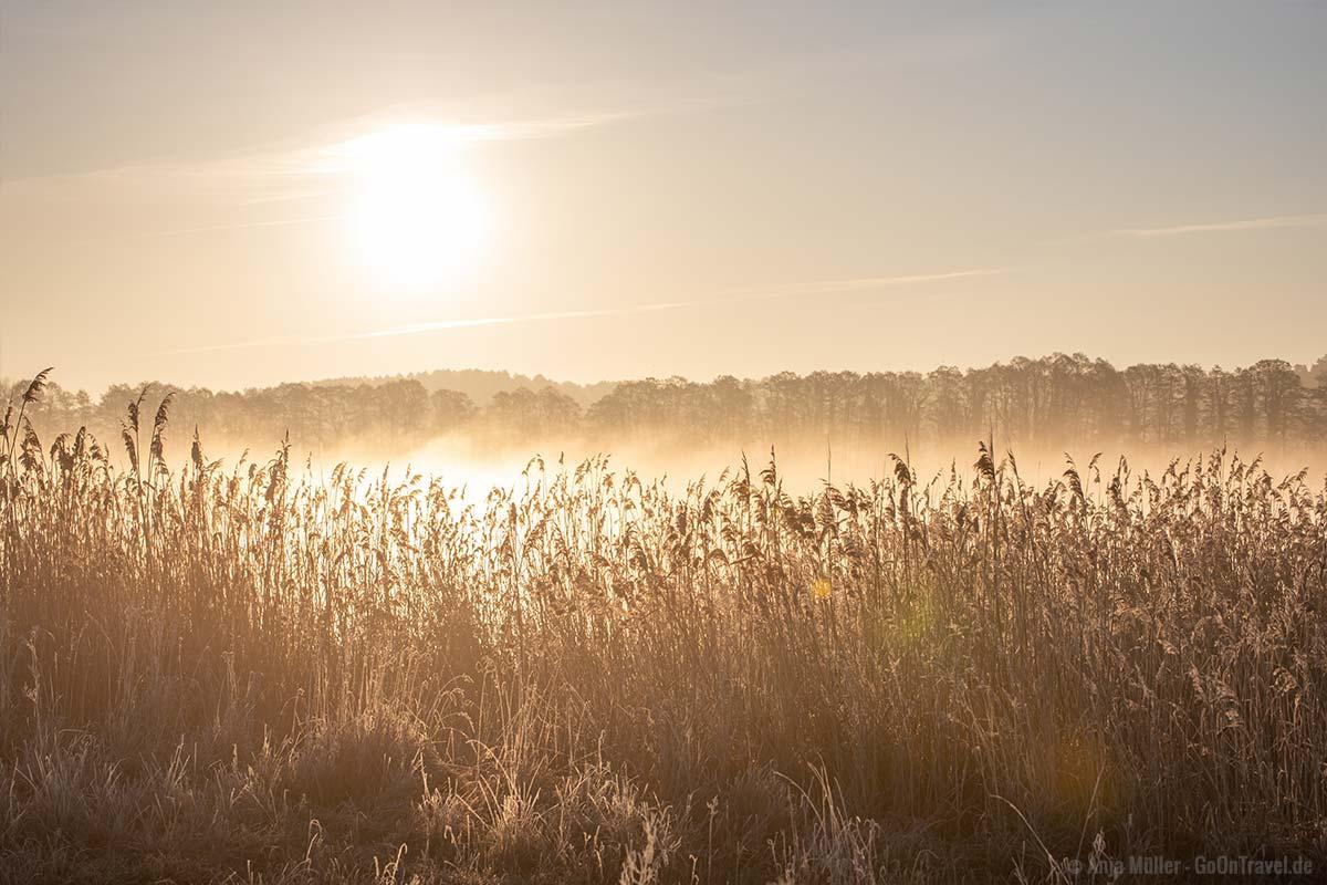 Sonnenaufgang und Morgennebel