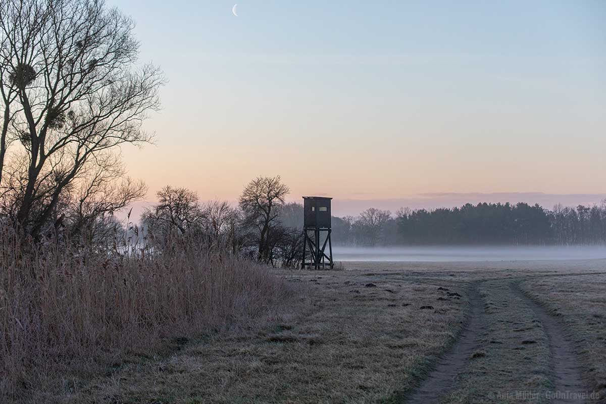 Morgennebel in Teltow Fläming