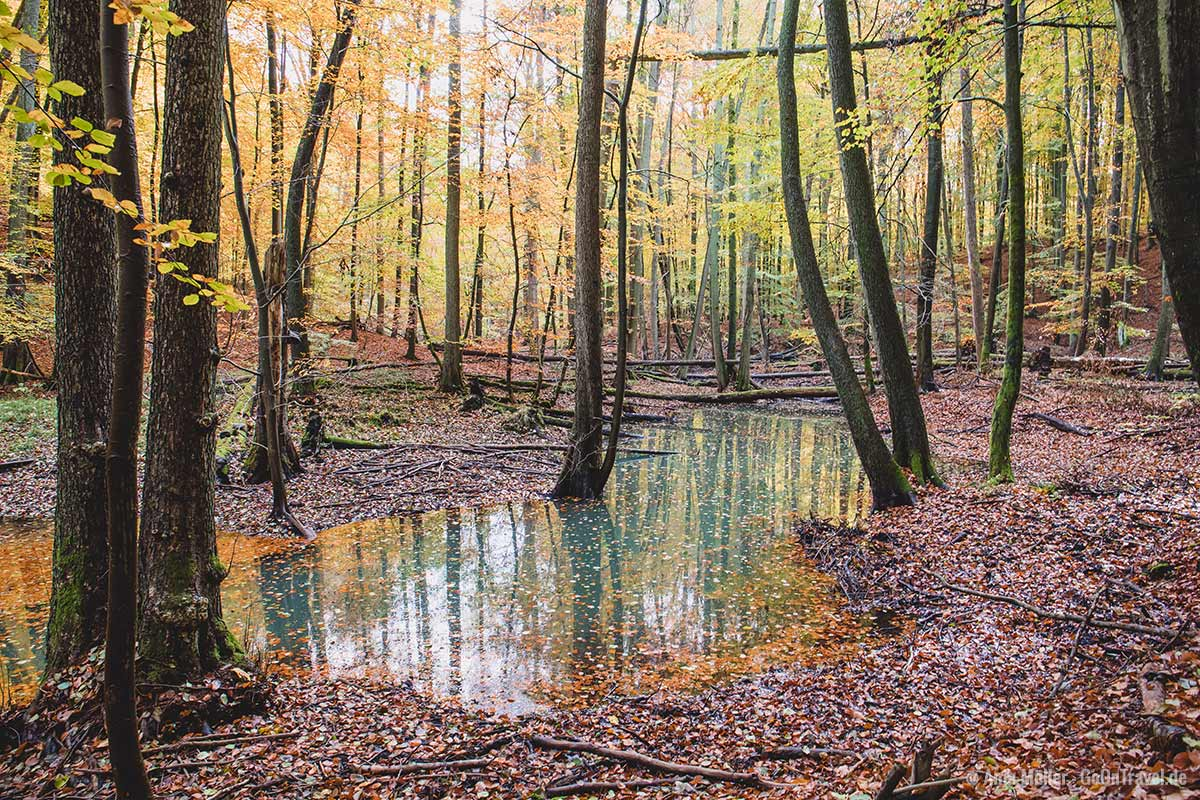 Nonnenfließ im Herbst
