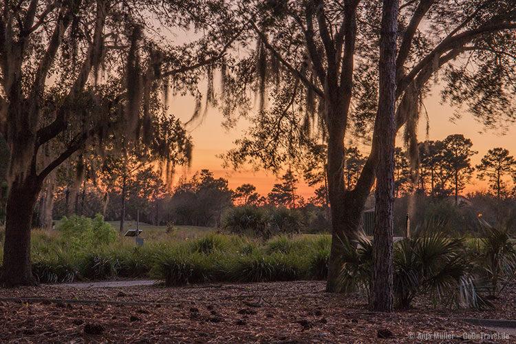 Sonnenuntergang in Orlando