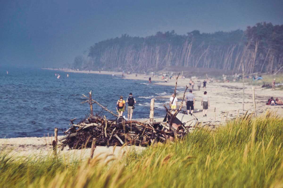 Der Weststrand auf dem Darß ist definitiv sehr beliebt und oft sehr voll.
