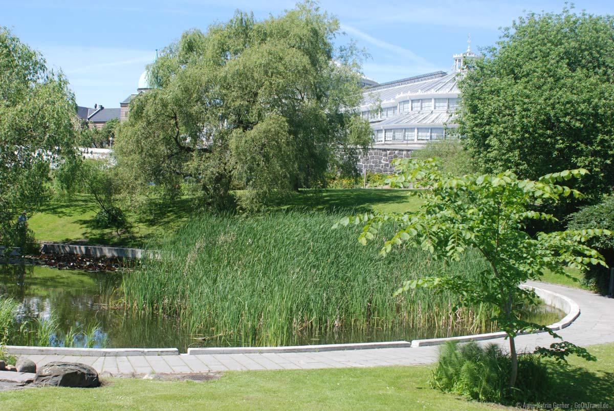 Das Palmenhaus im Botanischen Garten.