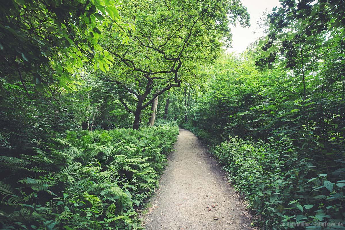 Viel Natur gibt es im Schlosspark Charlottenburg