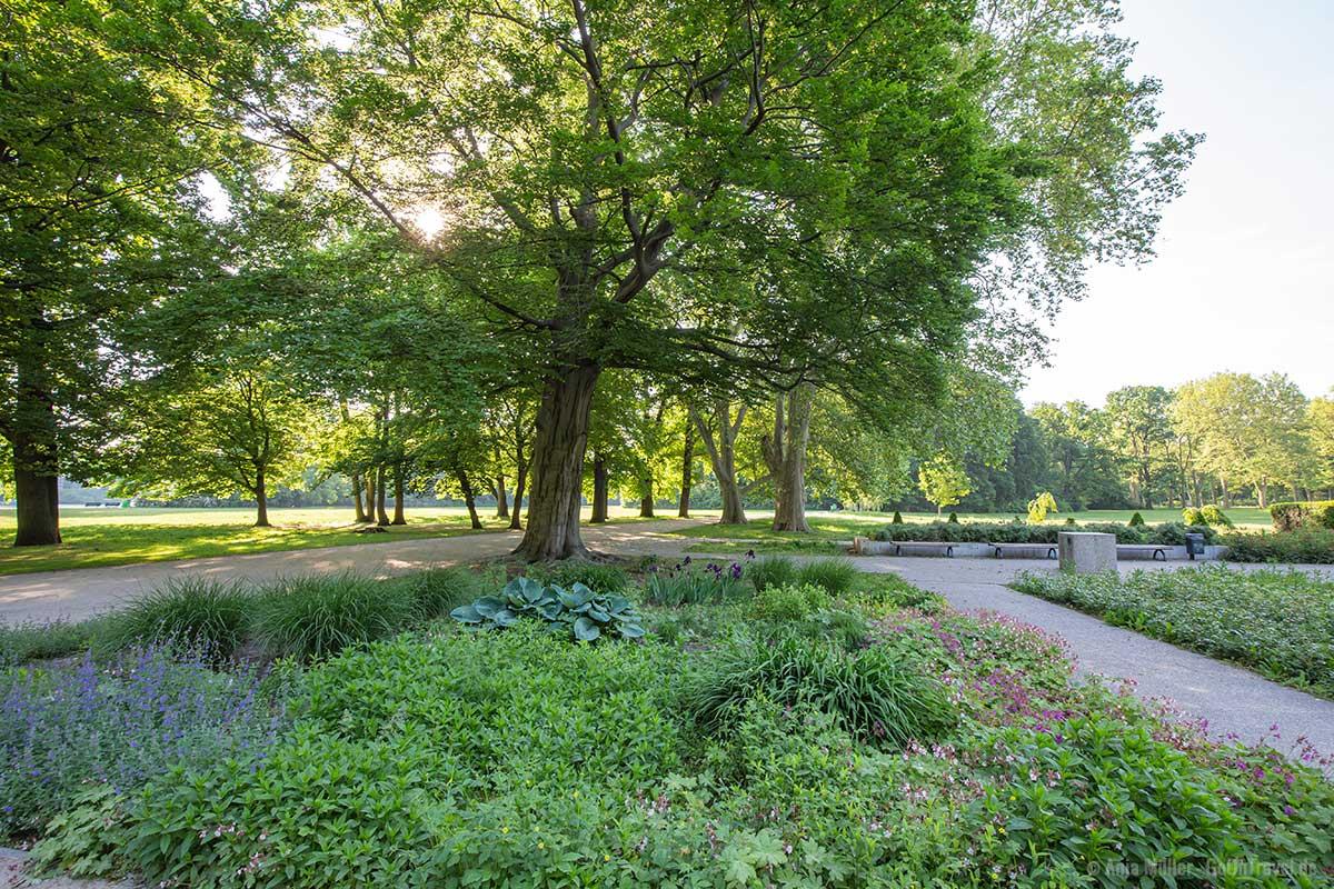 Sommerblumengarten im Treptower Park