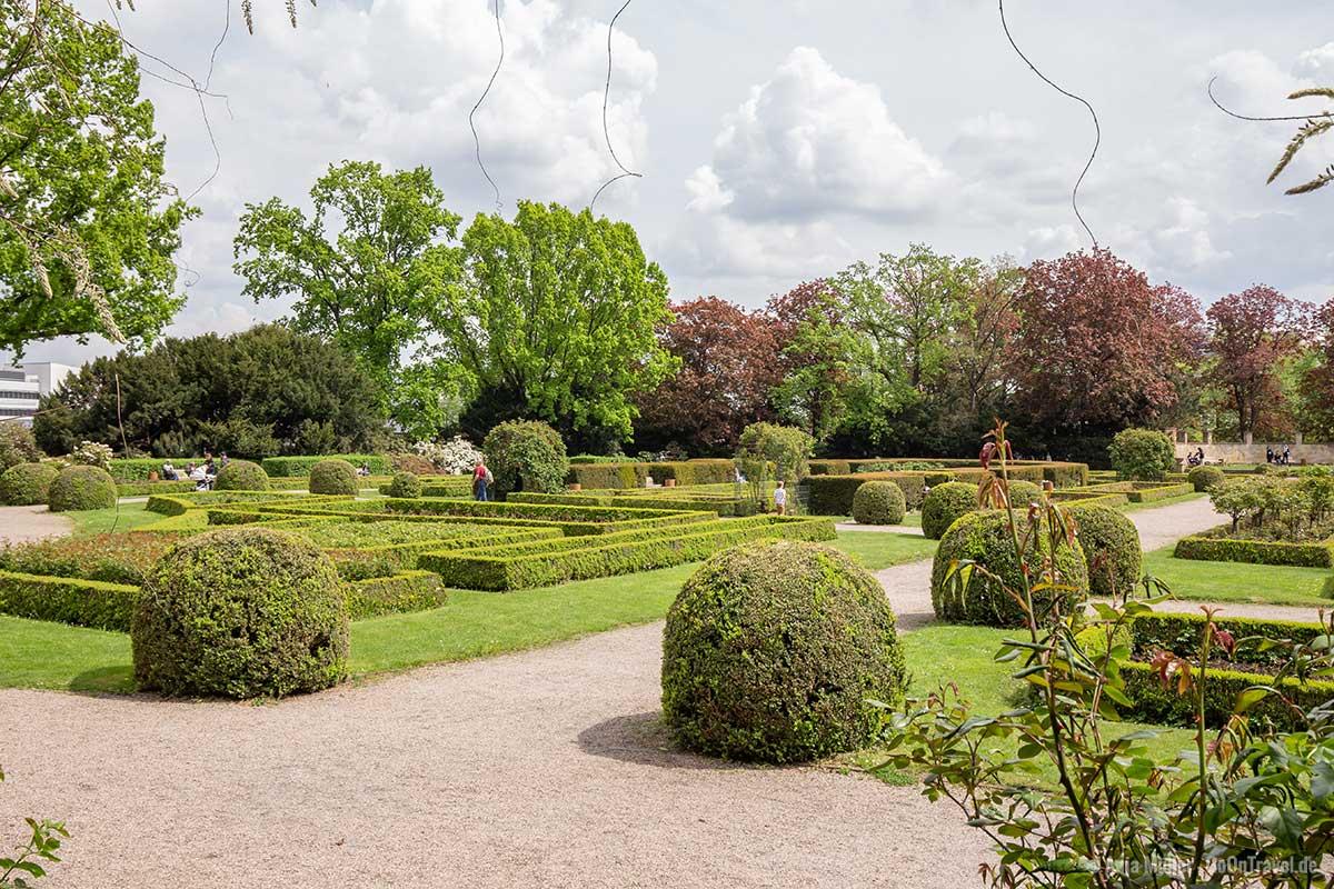Rosengärten gibt es in vielen Parks in Berlin