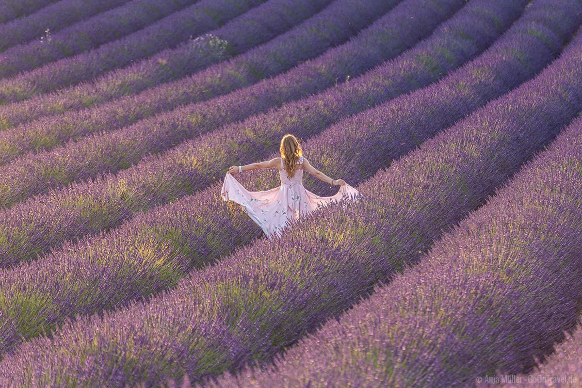 Nicht durch Lavendelfelder rennen