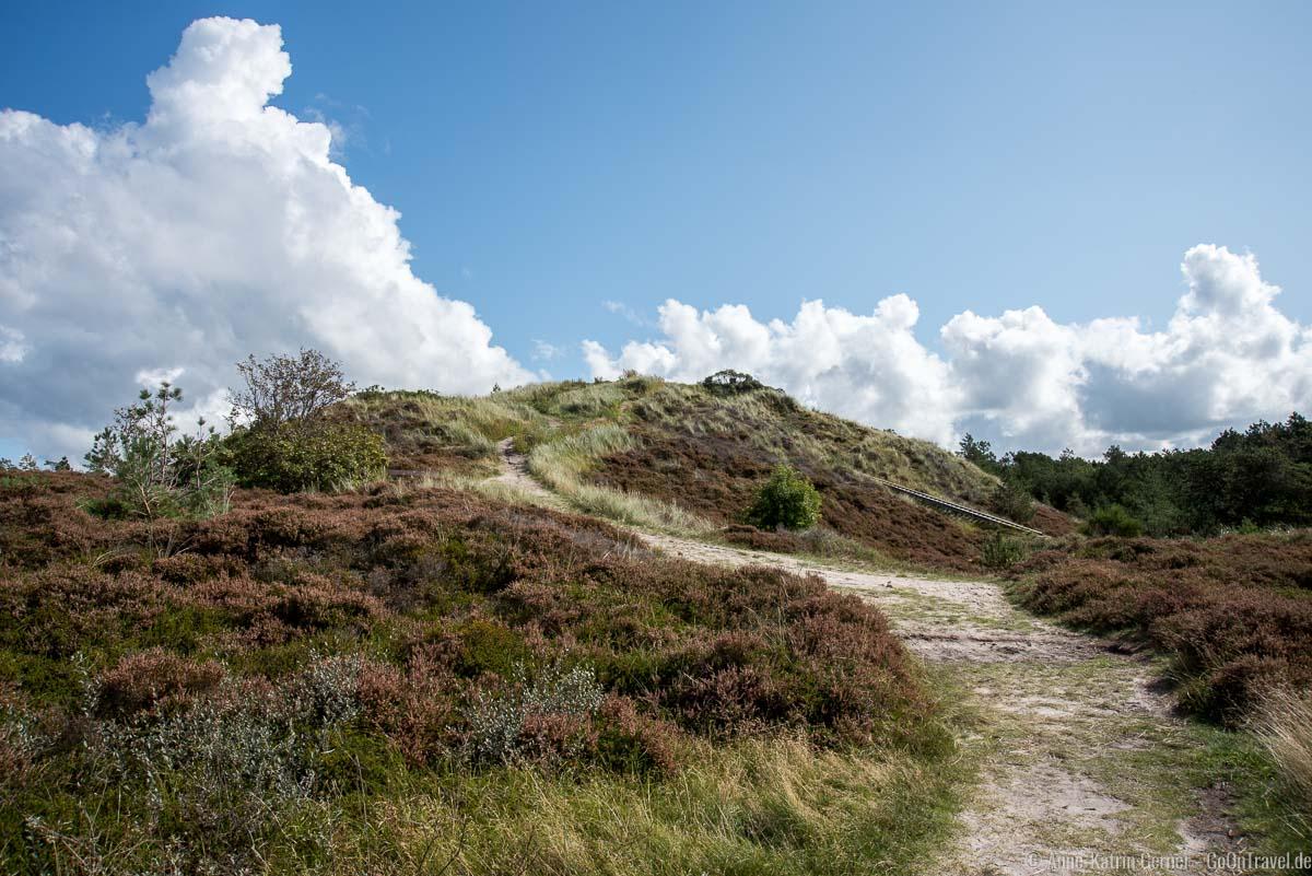 Die höchste Erhebung der Insel Römö ist 18 m hoch.