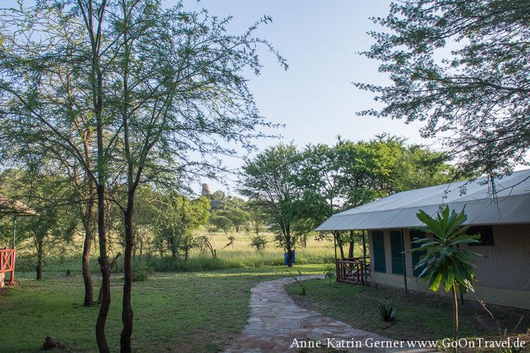 Mbuzi Mawe Serengeti / Tansania