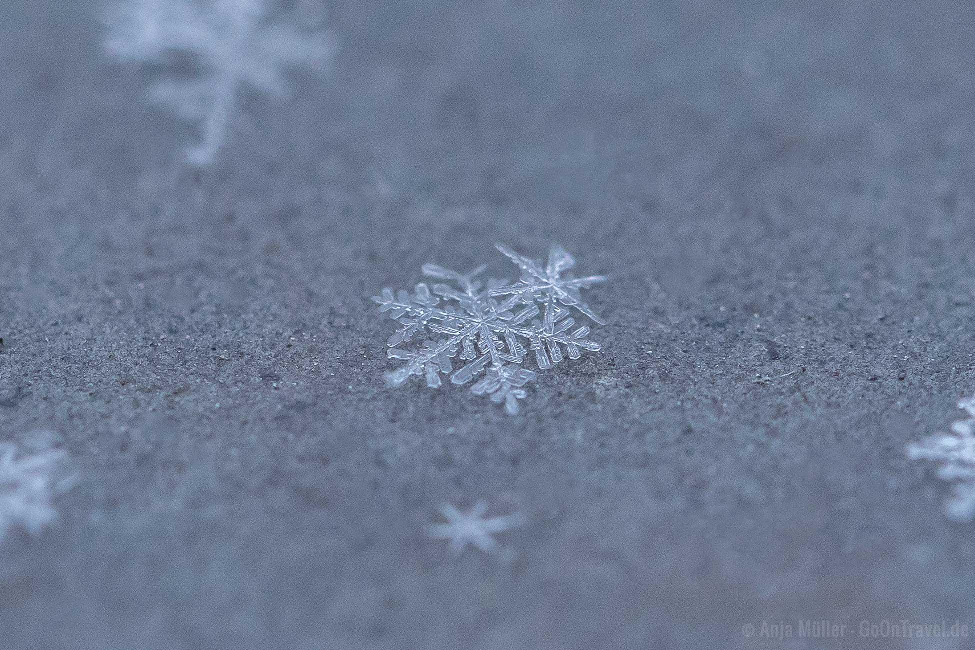 Schneeflocken fotografieren
