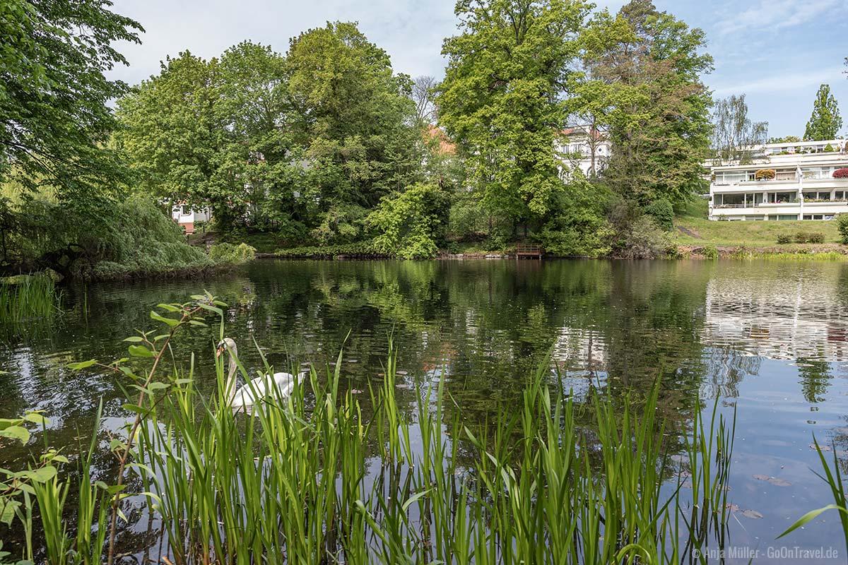 Einer der idyllischsten Seen in Berlin: Dianasee