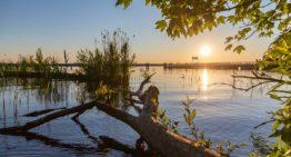 30 bezaubernde Seen in Berlin, die du garantiert nicht alle kennst