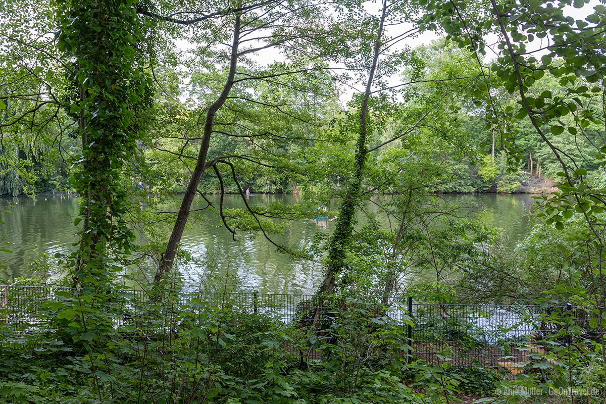Eingezäuntes Ufer am Plötzensee