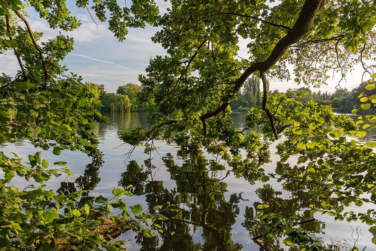 Ufer vom Schäfersee
