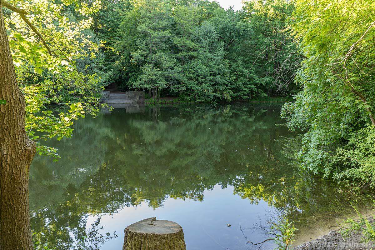 Steinbergsee mitten im Park