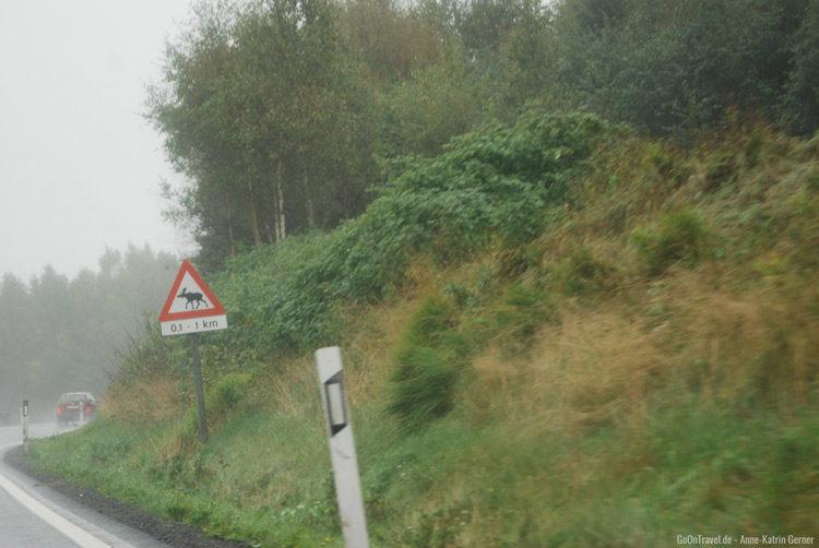 unterwegs auf norwegischen Straßen