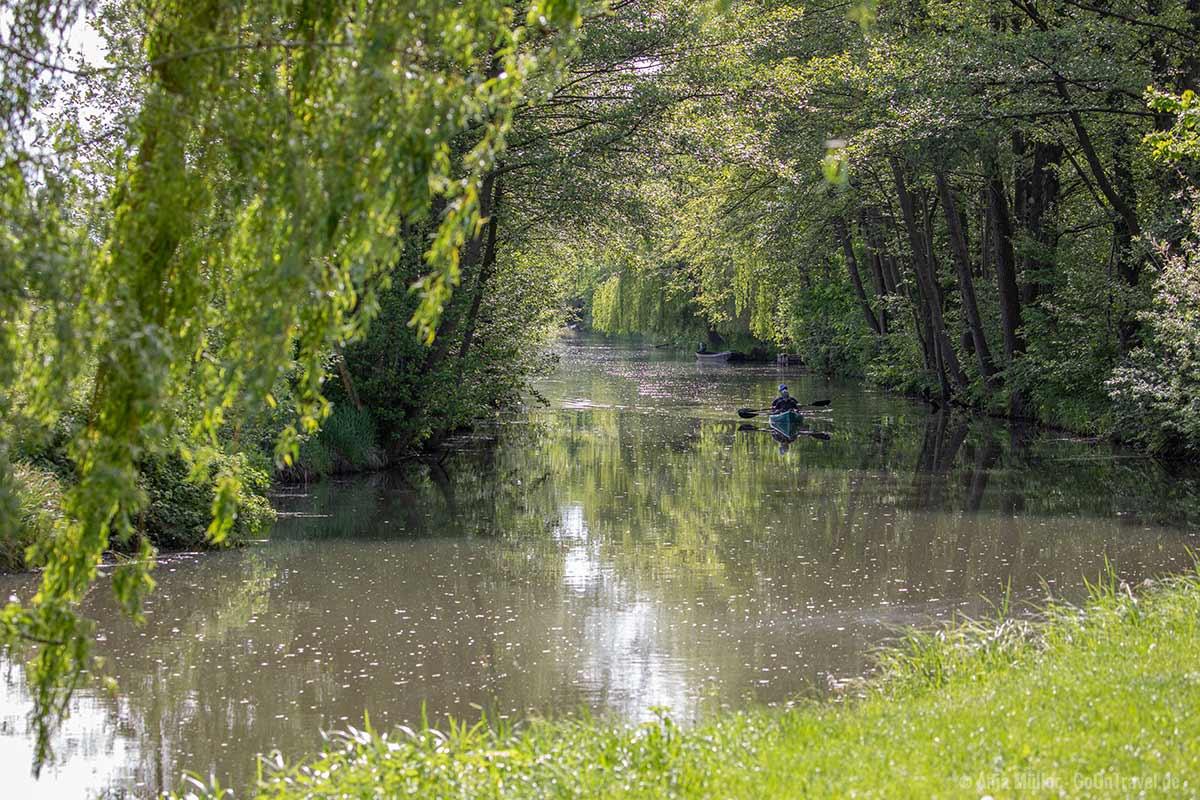 Mit dem Paddelboot den Sprrewald vom Wasser aus erkunden.
