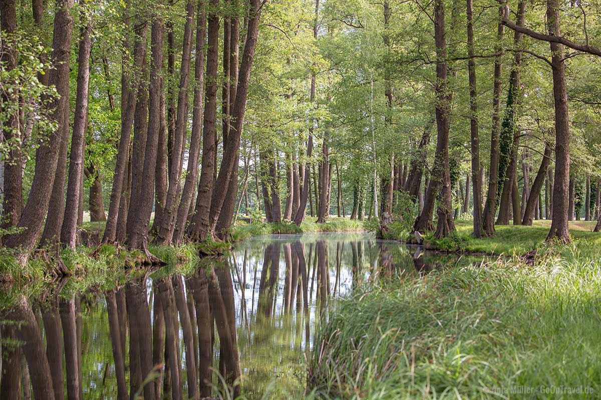 Der Spreewald zählt zu einem der schönsten Natur Sehenswürdigkeiten Brandenburg.