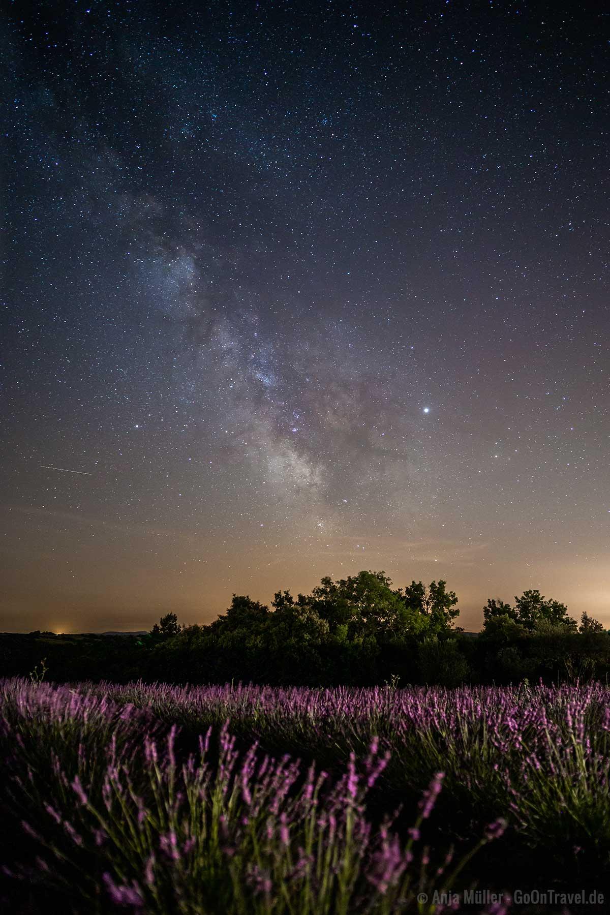 Sterne fotografieren: Milchstrasse über dem Lavendelfeld