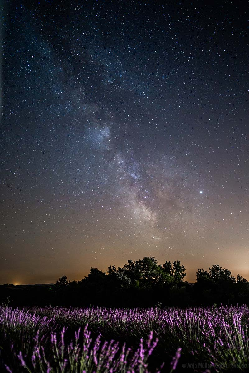 Milchstraße über dem Lavendelfeld