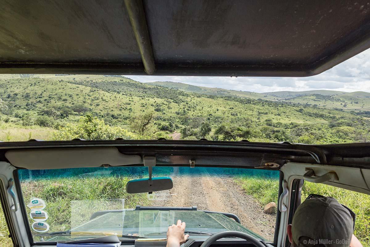 Blick vom Safari Jeep auf den Hluhluwe iMfolozi Park