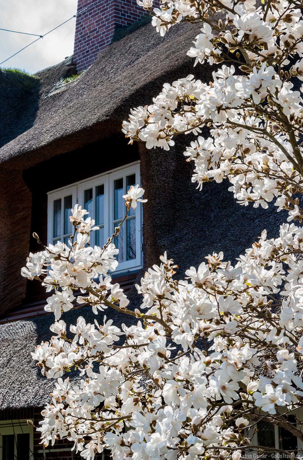 Mit dem Frühling kehrt der Tourismus auf Sylt zurück