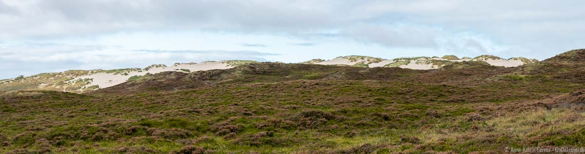 Panorama der Sylter Wanderdüne
