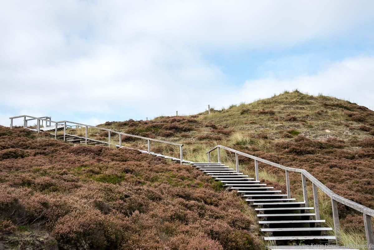 Holztreppe zur Aussichtsplattform