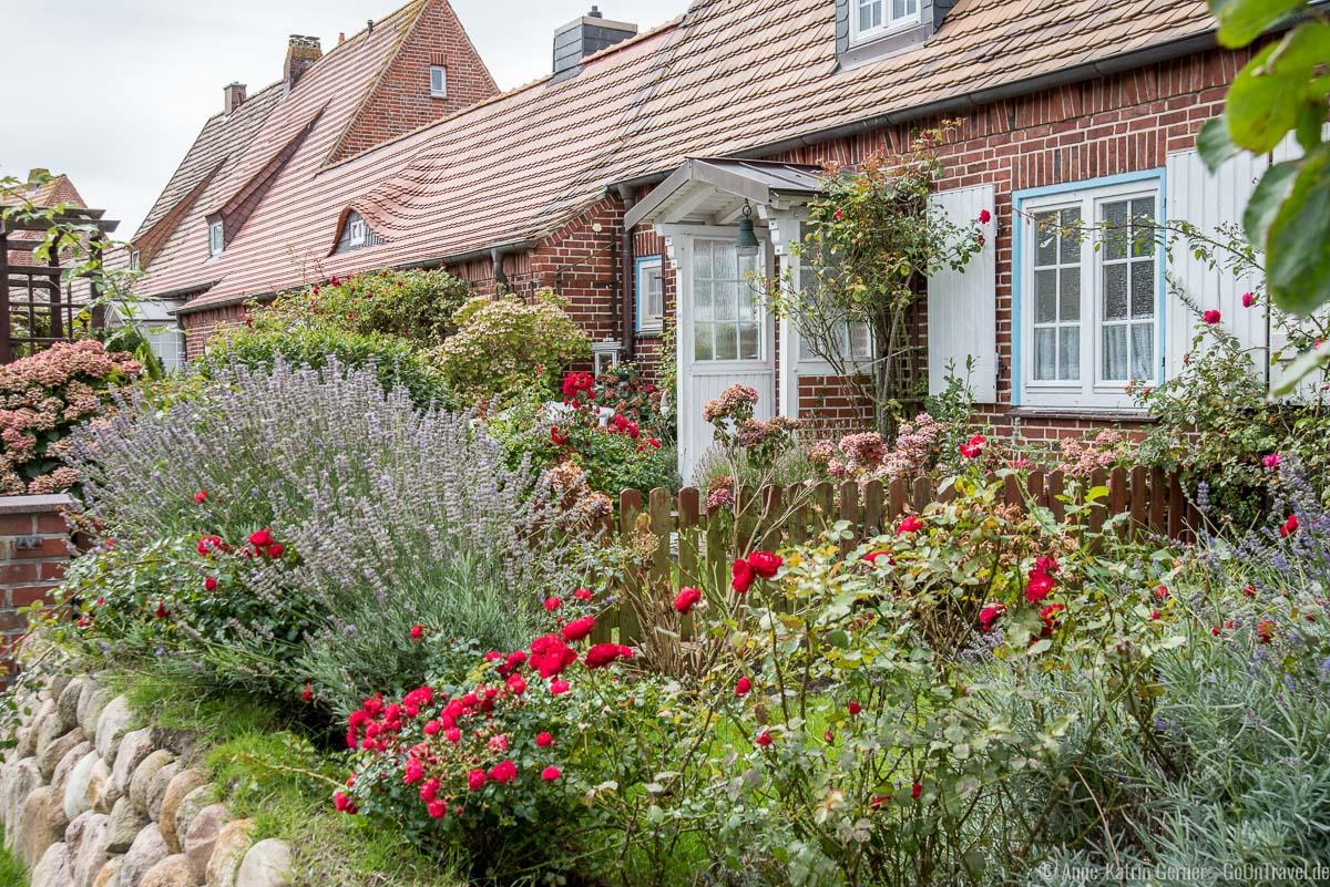 wunderschöner Vorgarten in der Mövenbergstraße in List