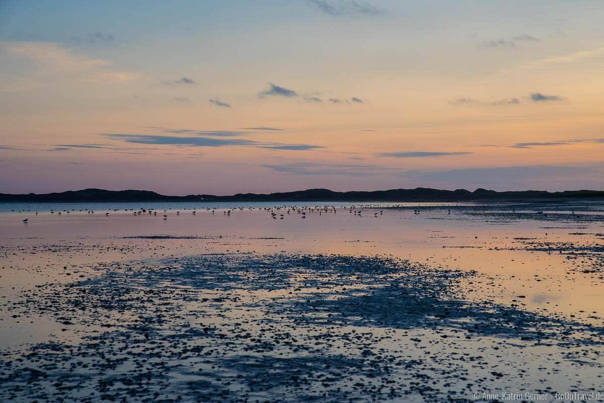 Der Königshafen ist ein Paradies für Zugvögel und Ruhesuchender
