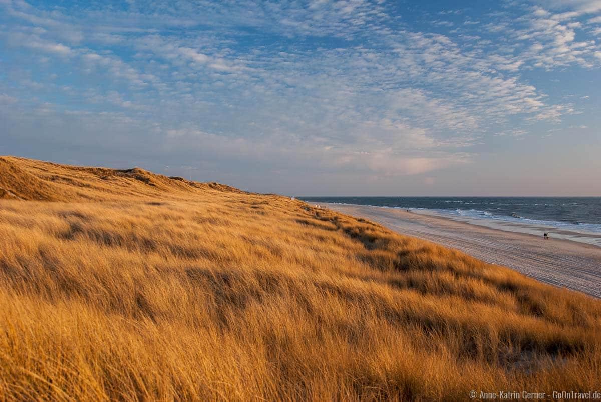 Strand und Düne soweit das Auge reicht