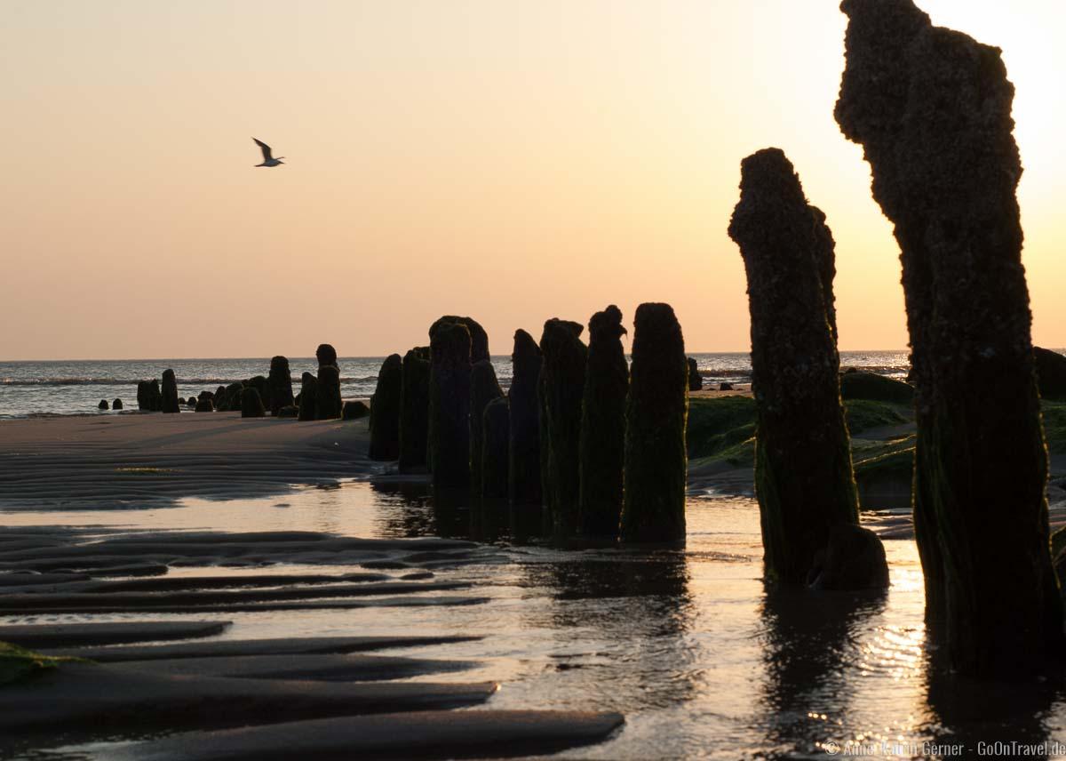 Buhnenreste am Strand von Westerland
